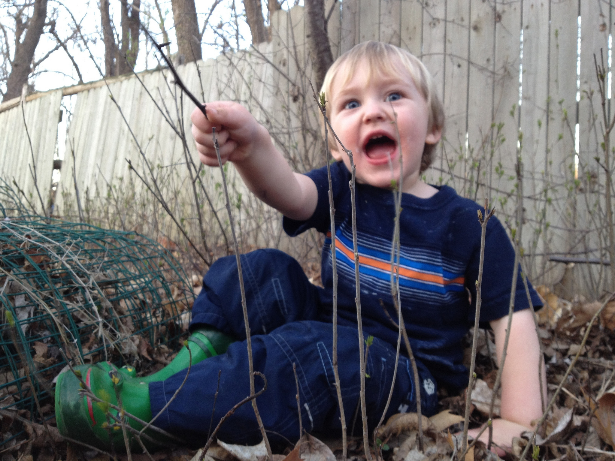 Jack in sticks